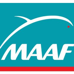 Assurance habitation MAAF ou Macif ?